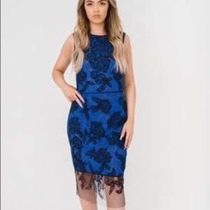 Vera Wang Collection Black Over-lace Blue Dress